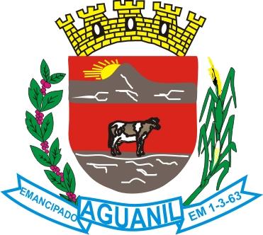 BRASÃO DO MUNICÍPIO DE AGUANIL